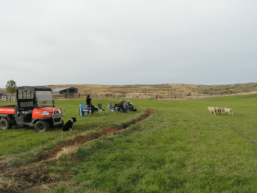 sheepcamp 2011